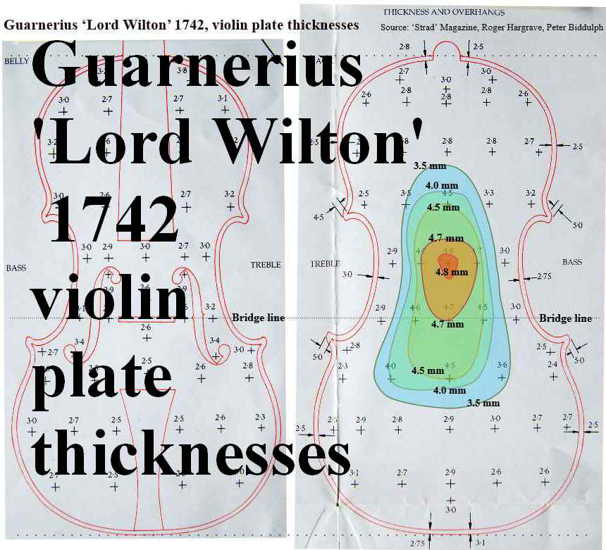 Guarnerius Lord Wilton plate thicknesses smll1