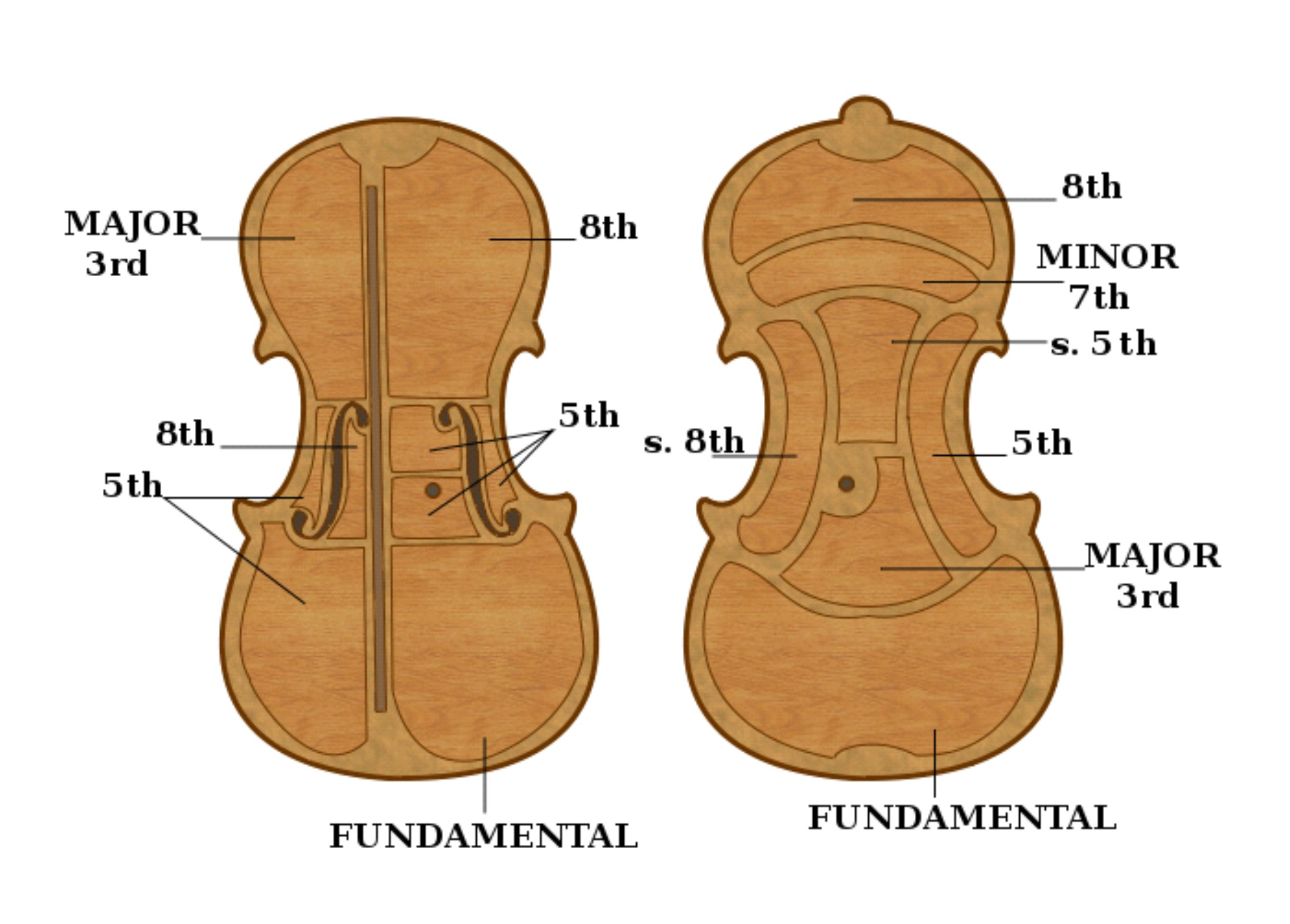 Violin-Area -Plate-Tuning